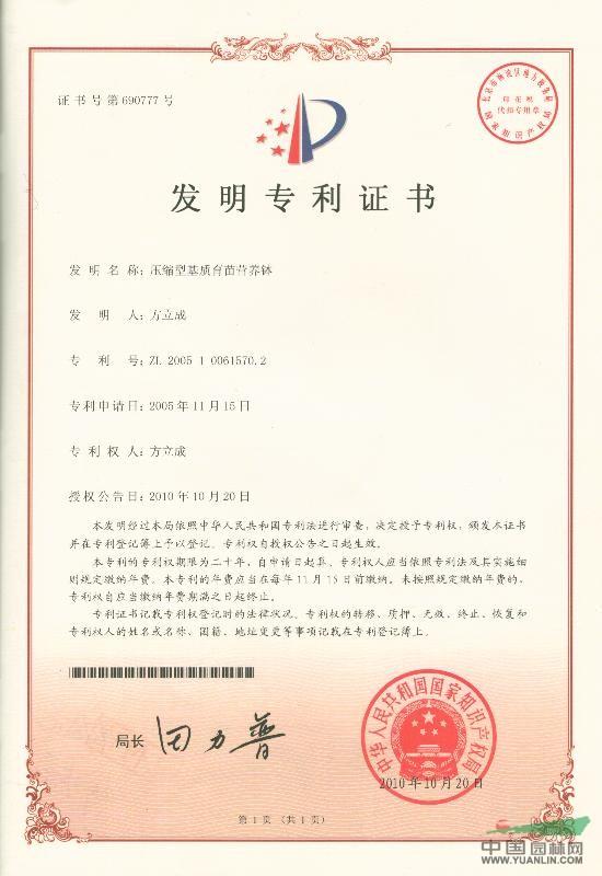 压缩型基质育苗营养钵发明专利